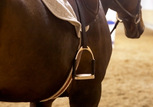 bay-horse-stirrup-saddle